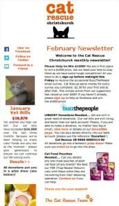 newsletter screengrab_long