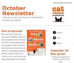 top_third_of_newsletter1