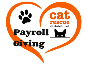 payroll give