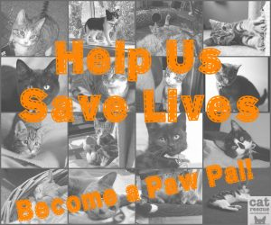 Help Us Save Lives..Become a Paw Pal